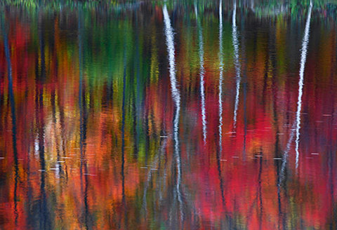 Peter Lik s photo One (2010) sold for $1 million in 2010